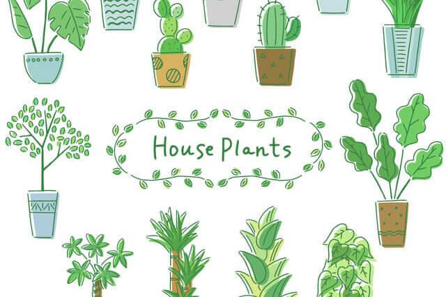 外構工事の提案もできるように植物の勉強をしています